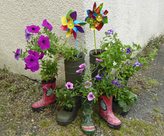 Collection of Wellies